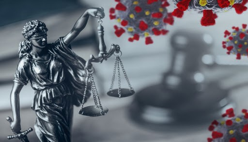 Litigation Support Services in Pandemic